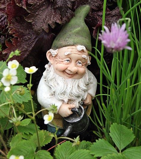 crazy lawn gnomes on pinterest garden gnomes gnomes and green thumb gnomes in the gardens fairies gardens