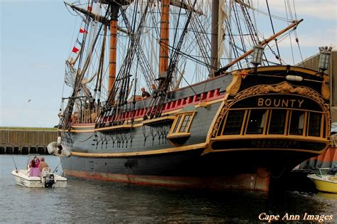 schip bounty tall ship hms bounty taking on water the hull truth