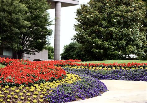 What Should I Look For In A Commercial Landscaping Commercial Landscaping Services