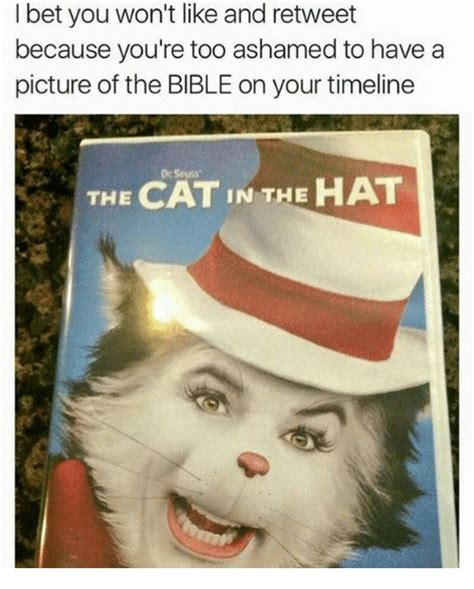 Hat Meme - funny cat in the hat memes of 2017 on sizzle