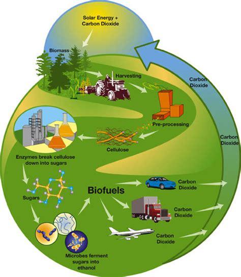 biofuel adalah gema riptek mengenal energi biofuel
