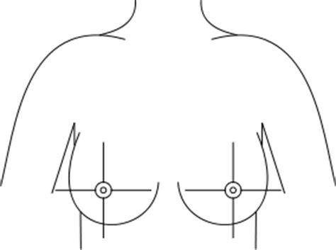 breast diagram drawing file breast quadrants svg wikimedia commons