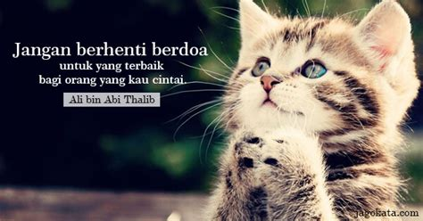 ali bin abi thalib jangan berhenti berdoa