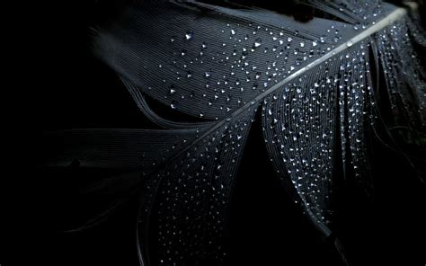 wallpaper new dark 38 best black wallpapers from around the world