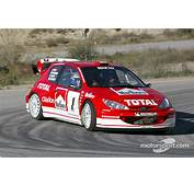 Gilles Panizzi In The New Peugeot 206 WRC 2003 At