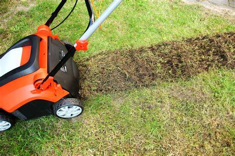Nach Dem Vertikutieren by Rasen Vertikutieren Warum Wann Wie Oft Plantura