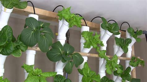 basement hydroponic tower garden version  youtube