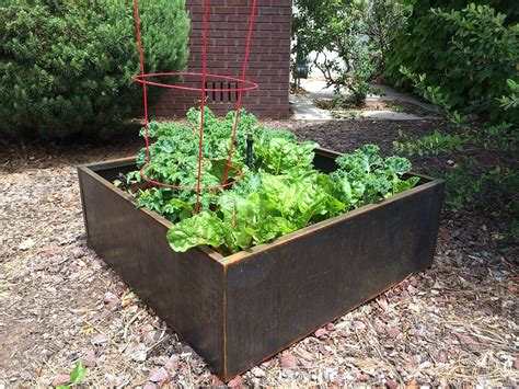 Growing Vegetables In Corten Steel Planter Beds Raised Vegetable Garden Planters