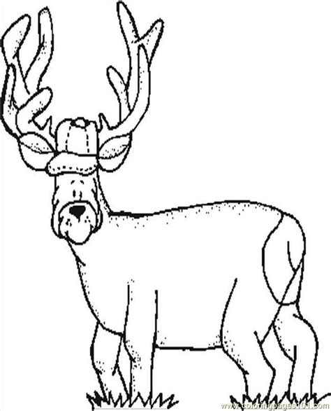 deer tracks coloring pages deer pictures to color coloring home