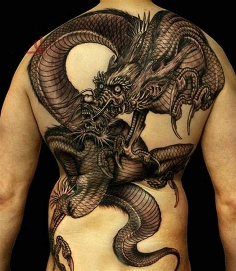 tattoo dragon funny 17 best images about funny on pinterest car humor