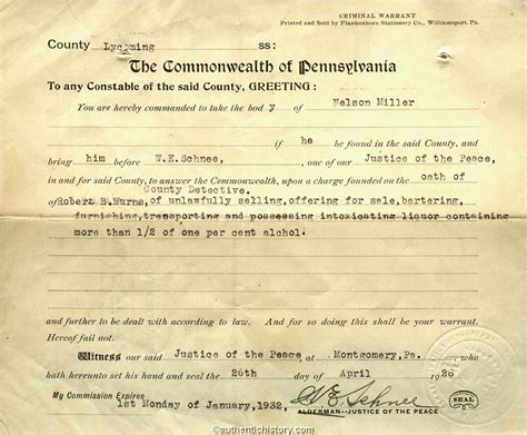 michigan bench warrant search an overview of the prohibition era 1919 1933