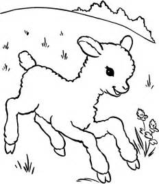 free coloring pages of to draw sheep