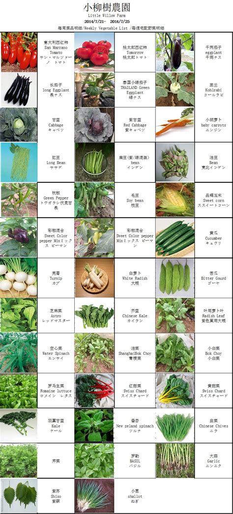 4 vegetables name asian vegetables name list related keywords asian