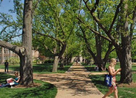 College Trees - tree cus usa wustl magazine washington
