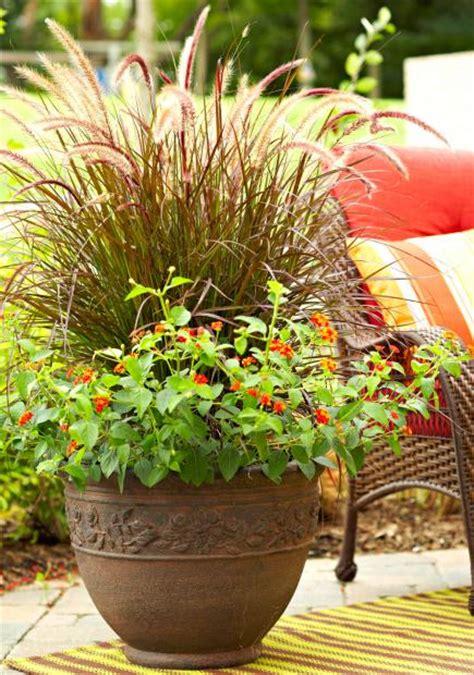 Pictures Of Outdoor Flower Pot Arrangements   Home Romantic