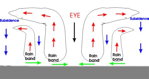 cyclone formation diagram tropical cyclone diagram www pixshark images