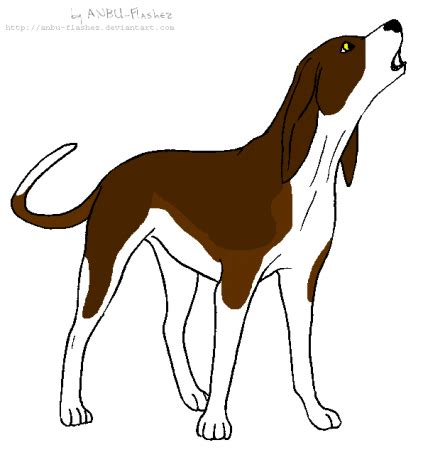 coloring pages of coon dogs coon hound coloring pages