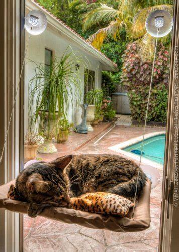amache per gatti amaca per gatti da attaccare alla finestra miciogatto it