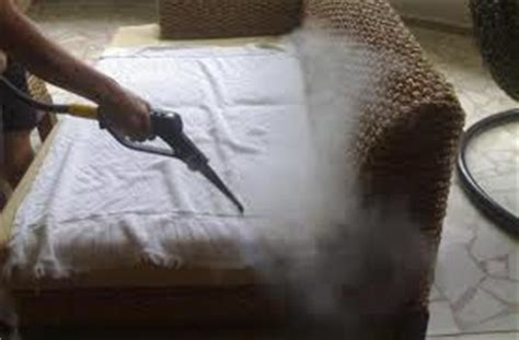 killing bed bugs with steam kill bed bugs with steam