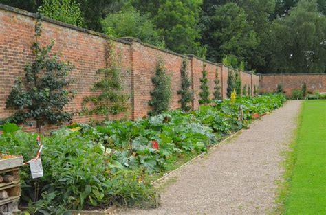 walled kitchen gardens exploring clumber park growing family