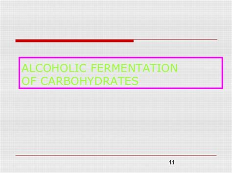 carbohydrates yeast fermentation of carbohydrates