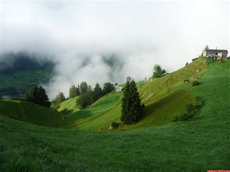 imagenes de verdes praderas senderismo aproximaci 243 n al gran glaciar de aletsch por