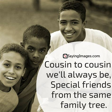 cusion brother top 30 cousin quotes sayings 187 annportal