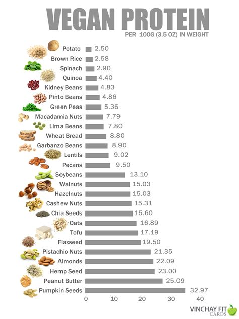 protein in vegan protein sources