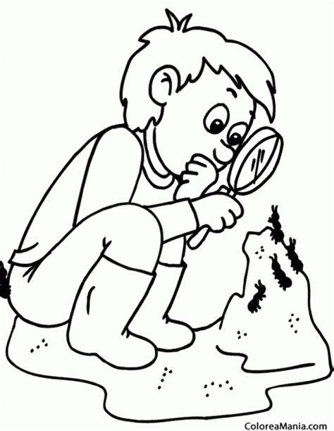 dibujos infantiles para colorear de hormigas colorear nio observando hormigas insectos dibujo para