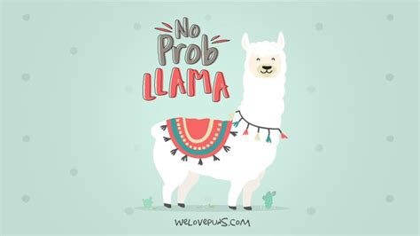 laugh worthy llama puns camp llama puns funny