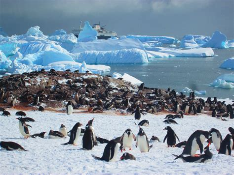 The Flight Deal   Practical Travel Tips: Ushuaia, Argentina