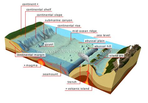 seafloor diagram 2ndsemesterr hydrology the floor vocabulary