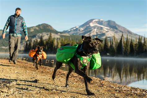 best hiking dogs k9 climb 10 best hiking backpacks for dogs hiconsumption