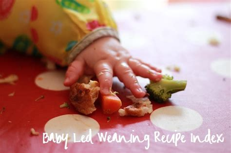 the baby led weaning quick baby led weaning recipes housewife confidential