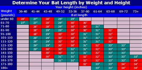 bat size charts 9 free word pdf documents download free