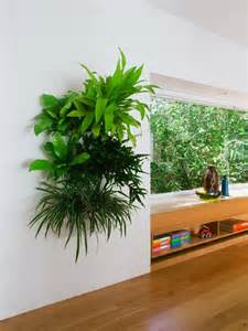 indoor plants ideas hanging plants as indoor decoration room decorating