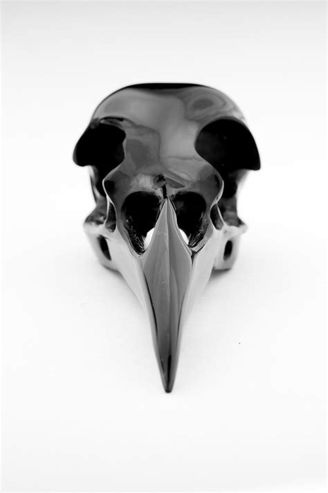 Obsidian Crow Skull - Head On | This is a head-on shot of