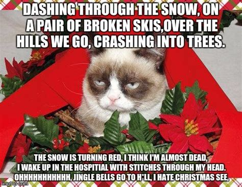 Grumpy Cat Snow Meme - grumpy cat snow meme 28 images first attempt at grumpy