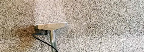 upholstery cleaning minneapolis envirocare professional carpet cleaning services in