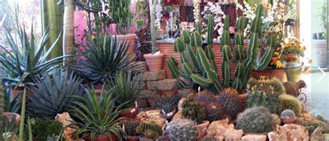 come fare un giardino di piante grasse giardino di piante grasse con consigli per realizzarlo