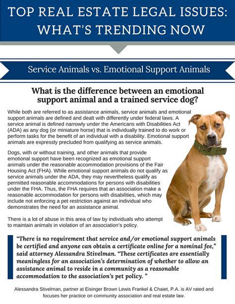 emotional support vs service service animals vs emotional support animals