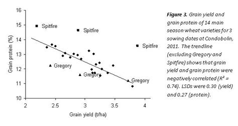 protein yield yield and protein relationships in wheat grdc