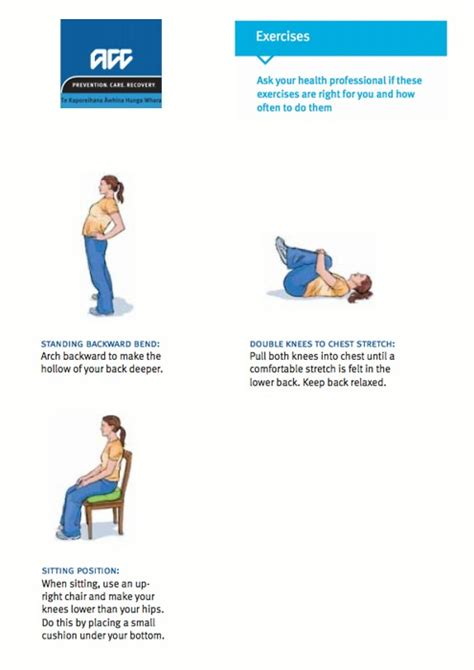ultimate lower back treatment guide causes exercises
