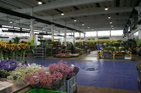 fiori torino foto mercato dei fiori torino