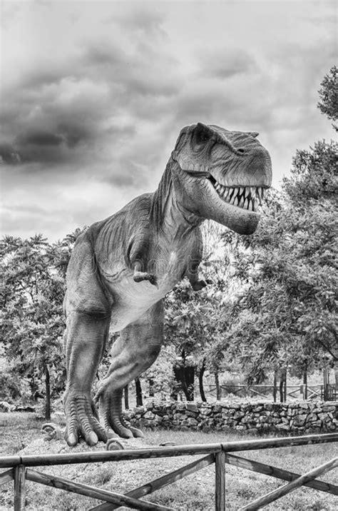 Dinosauro Di Rex Di Tirannosauro Dentro Un Parco Di Dino
