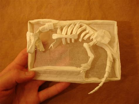 Origami Skeleton - mind blowing origami dinosaur skeletons origami me