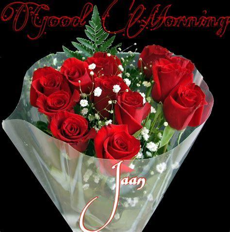 Good morning goodmorning rose roses love iloveyou