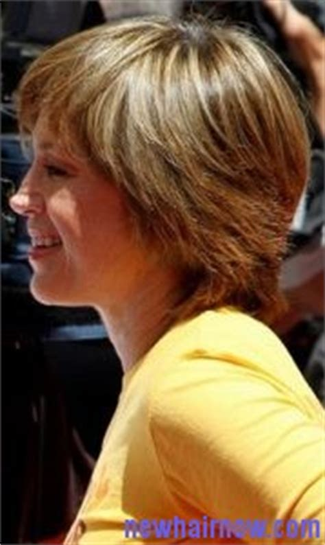 back view of dorothy hamils hair picture of dorothy hamill wedge haircut short hairstyle 2013