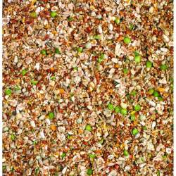 different types of bird seed
