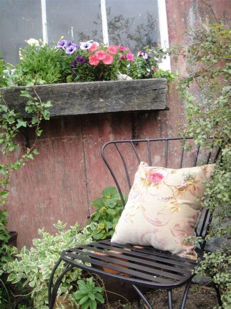 cottage garden cafe 33 best images about kentucky roses david garden